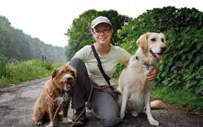 Ich will die Hunde denken lassen – BELLNESS Hundebetreuung in Herne