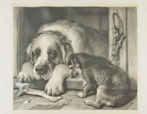 Zwei Hunde vor einer Hundehütte mit Knochen
